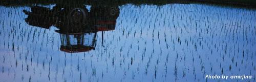 北海道の農作物生産「ワッカ・ヴィレッジ」が破産決定受け倒産
