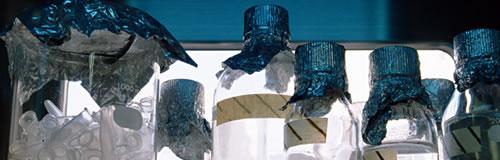 理化学研究機器・試薬販売の「レノバサイエンス」が破産へ