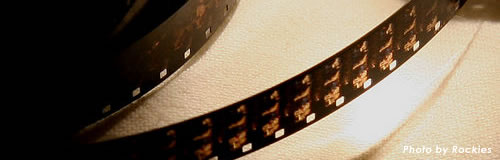 映画配給の「ゴー・シネマ」に特別清算の開始決定