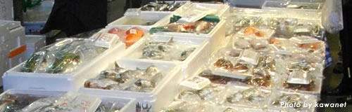 名古屋の海産物加工「名古屋灘幸」が破産決定受け倒産
