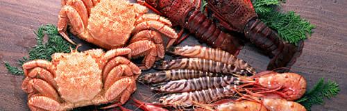 北海道のカニ卸「マル海光洋水産」が自己破産申請し倒産