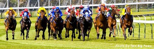 フサイチで著名な馬主「関口氏」が所有馬の差し押さえ受ける