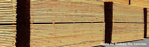 木材加工販売「山梨県集成材事業協同組合」が破産申請し倒産へ