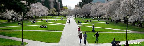 15年卒の大学生就職内定率(2月)は86.7%、3.8%改善