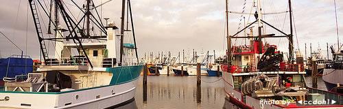 岩手の大槌町漁業協同組合が自己破産申請し倒産