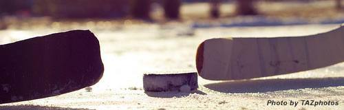 アイスホッケーの「日本製紙クレインズ」が今季限りで廃部