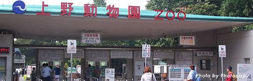 08年度・上野動物園の入場者数が300万人を割る